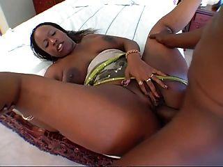 Chocolate Stallion- Big Butt Shake Off