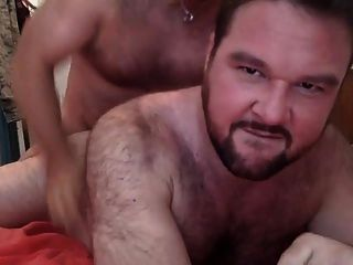 Bear Love Cock In Your Hole