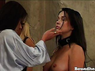 Slaves In Trouble Mistress Slave Training For Troublesome