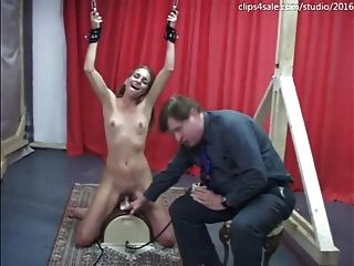 Sybian At Clips4sale.com