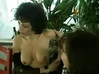 Bisex - Strapon Swingers Party